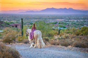 Equestrian_tours